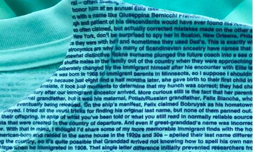 Names not changed at Ellis Island tee shirt