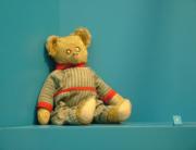 Ellis Island Teddy